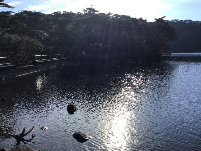 2時過ぎにえびの高原の駐車場に到着しました。ちょっと風が冷たいですね。<br />硫黄山が噴火しているので規制がかかっています。池巡りコース(白紫池、六観音御池、不動池)は不動池で折り返しになっています。久しぶりのえびの高原で30年くらい来ていないかと思います。白紫池は冬場になれば池が凍ってアイススケートが出来て大変賑わっていました。今はできなくなっていて駐車場近くに人工アイススケート場が出来ています。孫たちを連れての池巡りなので時間もかなりかかり不動池まで回ることはできませんでした。