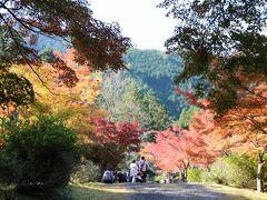 紅葉を楽しみに兵庫県の高源寺と天滝に出かけてきました