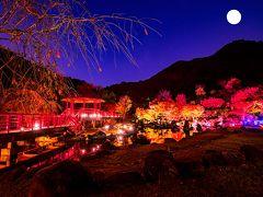 渓石園ライトアップ 2019