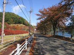 2019年奥琵琶湖・海津大崎&つづらお&菅浦 ロードバイクで紅葉見学~