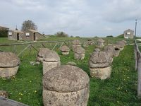 Tarquinia。エトルリア文明の遺跡を求めて。