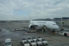 【フライト編①】JAL787ビジネスクラス 福岡→成田→デリー  ~ワンワールド世界一周航空券で2ヶ月の旅