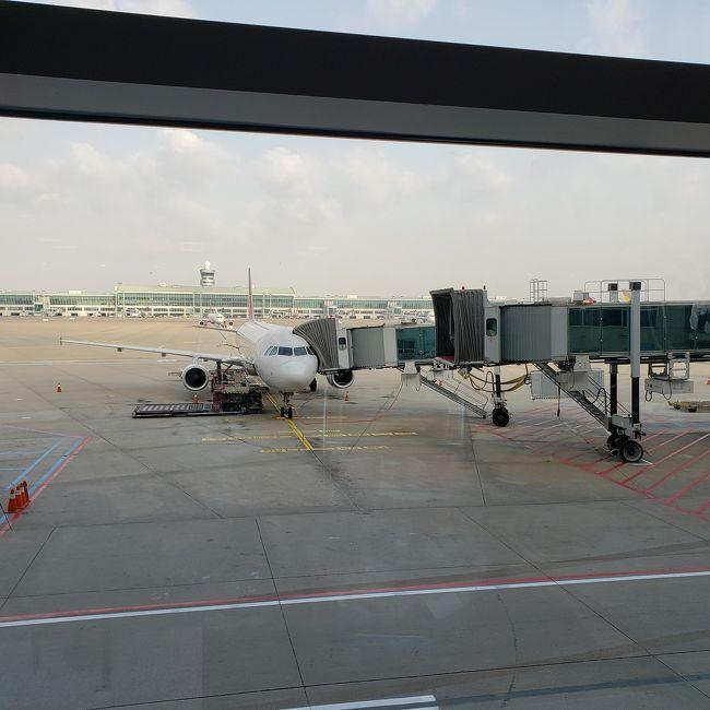 カーズが大好きな息子3歳をカーズランドへ連れていきたい!という夢を、お得な料金のアシアナ航空で叶えてきました!<br />韓国との情勢悪化前に購入したので韓国経由は緊張しましたが特に問題もなく快適に利用できました。<br /><br />料金は往復エコノミーだとJAL、ANAの半額以下。<br />なので復路のみビジネスで予約。<br />それでも3人で50万円ほどで購入できました!