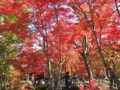 河口湖から昇仙峡へ紅葉を愛でる旅 河口湖編