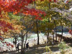 錦秋! 秋の長瀞渓谷を廻る 前半-岩畳と紅葉-