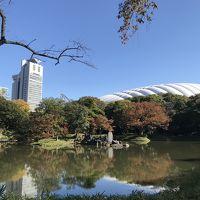 小石川後楽園【2019.11.16 紅葉は、ま〜だかな〜】