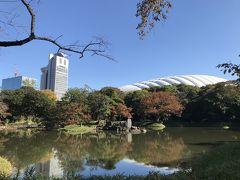 小石川後楽園【2019.11.16 紅葉は、ま~だかな~】