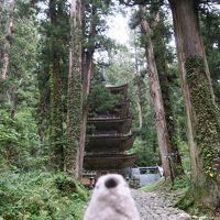 ゴエモン危機一髪! 嵐の山形温泉旅行Part2
