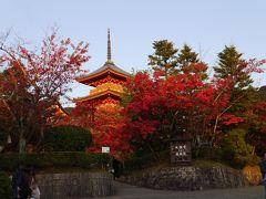 紅葉の京都 初日