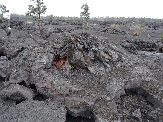 ハワイのイメージとは<br /><br />「日本人大定番の海外リゾート」<br /><br />のほかに<br /><br />「ドロドロの溶岩が宅地近くまで流れ込んで来る火山の島」<br /><br />という側面もあろう。<br /><br /><br />ホノルルが前者ならハワイ島は後者。<br /><br /><br /><br />大地の躍動を感じるところなのだが、今はその躍動がひと段落しているようです。