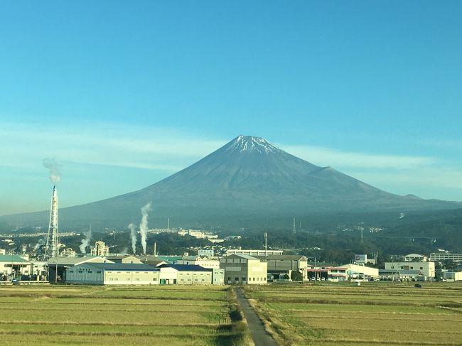 タイ赴任が決まり、大阪出張ついでに、プライベートでお世話になった色々な所にバタバタと挨拶回り。<br />2日間飲んで、日曜日東京に戻りタイ語のレッスンに行って終了。