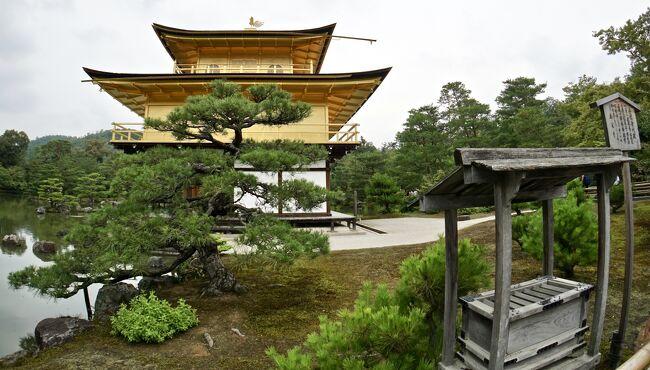 あの頃 全く見ていなかった「京の都」をもう一度「大人になってからの修学旅行リベンジ」の、11(金閣寺と嵐山/京都)