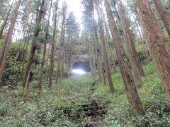 1泊2日熊本旅行(2019年10月・宿房あそ)