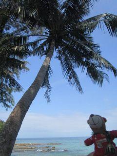 2019年11月 コタキナバルの旅:その2(11/15) マヌカン島とシーフード