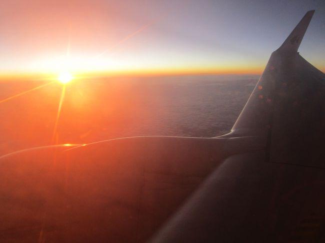 コタキナバルでの滞在を終え、とうとう帰国です。<br /><br />深夜便のため、空港での待ち時間が少々長い・・・・<br /><br />寝たら置いて行かれる~~と思うと、眠れません。