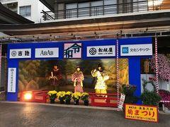 東京・湯島天神の菊まつり2019