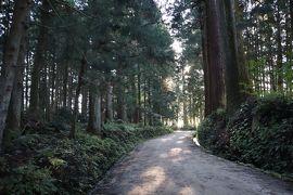 日光の社寺・・昼なお暗い日光市杉並木公園をめぐります。
