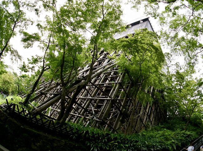 あの頃 全く見ていなかった「京の都」をもう一度「大人になってからの修学旅行リベンジ」の、きゅう(清水の舞台は工事中/京都)