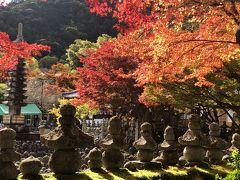 2019年11月 まだ行ったことのない京都、一日乗車券と嵐電でめぐる広隆寺・嵐山・念仏寺・大覚寺・金閣寺