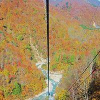 新潟から富山へ、紅葉満喫旅行①