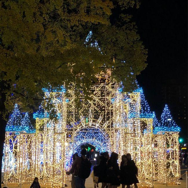 まだ12月になってもいないのにもうクリスマスイルミネーションなんでしょうか…広島の平和大通りはキラキラしています (ドリミネーションと言うらしいです)。<br />華やかなのは大好きですが、一人旅の目にはカップルたちが眩しいです。<br />加えて今日は胡子(えびす)講の日であるらしく、目抜き通りが歩行者天国になって、屋台やら出し物やらで大賑わいです。<br /><br />でも、やっぱり自分は色気より食い気。<br />岡山で一泊、広島で二泊、ほぼ呑み食いだけの旅行記(というか、お店の備忘録)です。<br />
