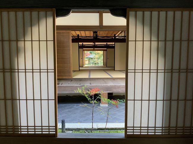 毎年の恒例になりつつある京都の紅葉拝観。<br /><br />今回は市バスで鷹峯から紫野大徳寺まで。<br /><br />11月10日に拝観を再開した大徳寺塔頭 高桐院、特別公開中の興臨院、通常拝観の瑞峯院に行ってみた。<br /><br />まずは少し離れた高桐院へ。<br />朝一番の光悦寺と同じく、まったりと時間を過ごすことができた。<br /><br />散り紅葉の名所だったらしく時期は少し早かった。<br /><br />庭園への降り方がわからず、ウロウロしていると外国人の方が「スリッパ?」と言って下駄箱を教えてくれた。<br />光悦寺では虹を教えてもらい、なにか小さな事だけど、とても嬉しい出来事だった。<br /><br /><br /><br /><br /><br /><br /><br /><br /><br /><br /><br /><br />