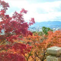 京都の紅葉<東山区>(2019.11)