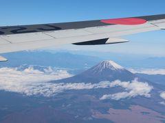羽田→伊丹、JL111便。旅行記にするほどでもないけど・・・JAL DREAM EXPRESS90。