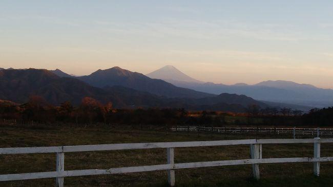 夫の友人が清里高原に別荘を建て招待されての訪問でした。何とか雪が降る前に訪れることができましたが、気温1度という冷え込みにブルブル震えてしまいました。<br />しかしながら久しぶりに澄んだ空気と山々の壮大な景色に感動しました。至るところから八ヶ岳連峰や富士山が見られて山好きにはたまんないでしょうねー。<br />清里の住人となった友人にいろいろ案内してもらい楽しかったです。<br />清泉寮前の山々、萌木の村、数々の牧場、野辺山高原、星野リゾート等々<br />食事も地元の方がいらっしゃるリーズナブルで美味しいカフェやレストランに案内してもらい、すごく良かったです。<br /><br />久しぶりの長距離ドライブで訪れた清里高原ですが、また一つ友人夫妻との素敵な思い出ができて嬉しいです。 本当にお世話になり、ありがとうございました。<br />