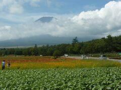 シニアトラベラー 思い出の旅シリーズ 富士山麓ドライブの旅!