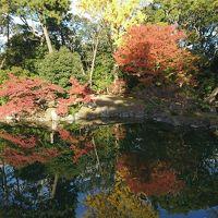 紅葉!京都3泊4日 �南禅寺三門・京都市動物園・平安神宮・ちょこっと京都御所