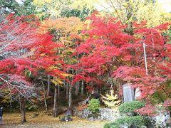 今年も丹波篠山の紅葉を見に出かけてきました