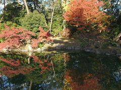 紅葉!京都3泊4日 ④南禅寺三門・京都市動物園・平安神宮・ちょこっと京都御所