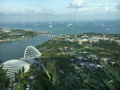 シンガポール旅行記 マリーナベイサンズ到着~ガーデンズ・バイ・ザ・ベイ散策編