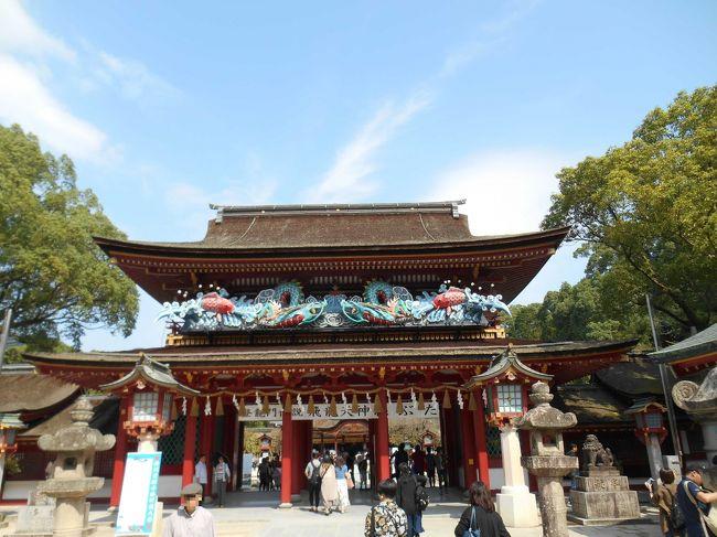 行きは、ANAのプレミアムクラスに乗って福岡空港へ。空港からは移動の足としてレンタカーのFitを借り、福岡の有名な神社巡りと海の中道マリンワールドへ行く、2泊3日の福岡旅行を楽しみました。福岡は出張では良く行っていたものの、観光では訪れたことがなかったので、思う存分福岡観光を行いましたよ。<br /><br />初日は、羽田空港から福岡空港へANAのプレミアムクラス(777-200)へ搭乗。福岡空港到着後は、ニッポンレンタカーを借りて、宗像大社の参拝。参拝後は、JR博多駅そばのANAクラウンプラザホテル福岡へ宿泊。<br />2日目は、太宰府天満宮へ参拝。その後は櫛田神宮へ行ってきました。<br />3日目は、海の中道海浜公園のマリンワールドへ。いるかショーやたくさんの動物たちを見学して、福岡空港へ。空港で福岡らしいお土産を買って、帰りはANAの普通席で帰りました。<br /><br />次は2日目、太宰府天満宮や櫛田神社へ行ってきました。<br /><br />1日目:ANA241便 羽田7:25発→ 9:20福岡空港へ→ ニッポンレンタカー(Fit)→ 宗像大社参拝→ 神宝館→ ANAクラウンプラザホテル福岡チェックイン→ JR博多駅でとんこつラーメンの夕食→ ANAクラウンプラザホテル福岡宿泊<br /><br />2日目:ホテル内クラウンプラザカフェにて朝食ブッフェ→ 太宰府天満宮へ参拝→ 櫛田神宮参拝→ JR博多駅でもつ鍋の夕食→ ANAクラウンプラザ福岡宿泊<br /><br />3日目:ホテル内クラウンプラザカフェにて朝食ブッフェ→ ホテルチェックアウト→ 海の中道海浜公園のマリンワールドへ→ 福岡空港(レンタカー返却) →空港内でお土産購入→ ANA272便 福岡空港20:50発→ 22:30着で羽田空港へ