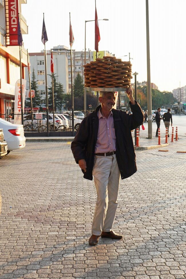 トラピックス「トルコ大周遊15日間」(16)カッパドキアからシルクロードを走り、キャラバンサライを経てコンヤへ至り、ホテルでゆっくり寛ぐ。