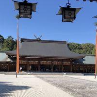 奈良と京都へぶらり旅 厳かな橿原神宮やライトアップされた東寺が心和む