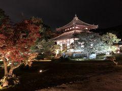 2019年11月 京都嵐山の紅葉 鈴虫寺・鹿王院(ライトアップ)
