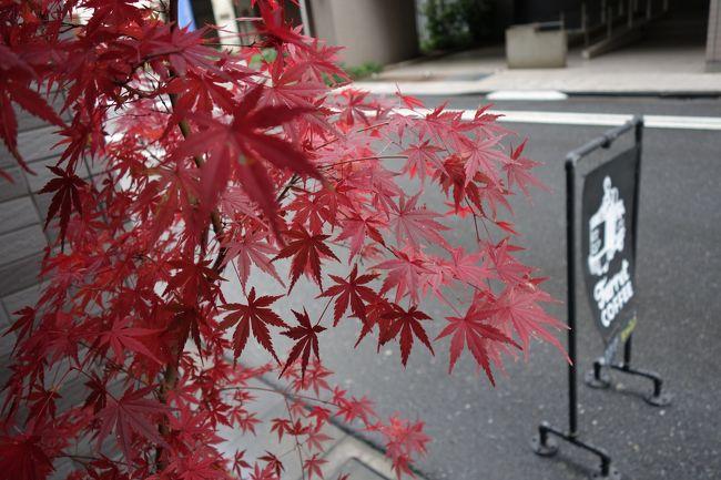 程好く?酔っぱらったら、コーヒーな気分です。上野からですと、日比谷線でいつもの店行けます。金曜土曜来れんかったから、行ってみますかね。