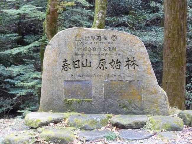 今日は山歩きを楽しむために奈良にやって来ました。柳生街道(滝坂の道)から春日山原生林を抜け若草山で奈良公園を望みます<br />