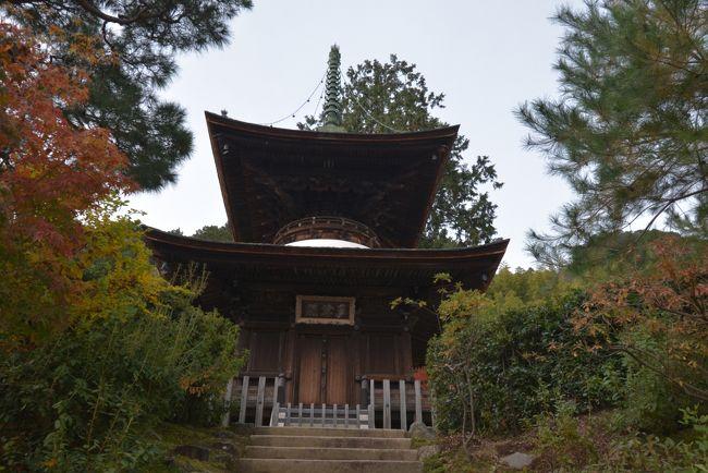 紅葉の名所として知られる小倉山の中腹に寺域を占める日蓮宗の寺院。<br />紅葉の名所がひしめく京都嵐山。その中でもとくにオススメなのは「常寂光寺」<br />山門から仁王門、本堂、多宝塔へと続く参道が秋には紅葉のトンネルとなります。