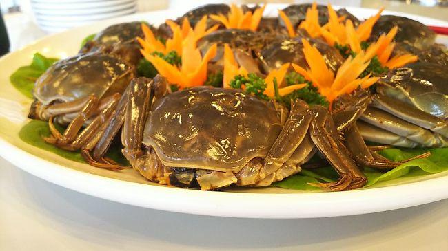 10年来の呑み仲間の誘いにのりました!<br /><br />上海蟹を食べたいね!と家人と話して<br />早……数年経ち<br /> やっとその機会がやって来ました(^-^ゞ<br /><br /><br />場所は<br />中華街 四五六菜館  別館<br />最上階の6階<br /><br />女性陣8人 と男性は家人一人(^^;<br /><br />14時~17時の午餐となりました!