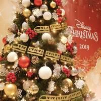 2019【年パス日記】その19 5時間半にギュギュッと詰め込み! クリスマスのディズニーシーへ☆彡