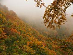 日本百名山遠征 雨と紅葉の雨飾山登山