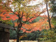おしどり夫婦の湖南三山 長寿寺