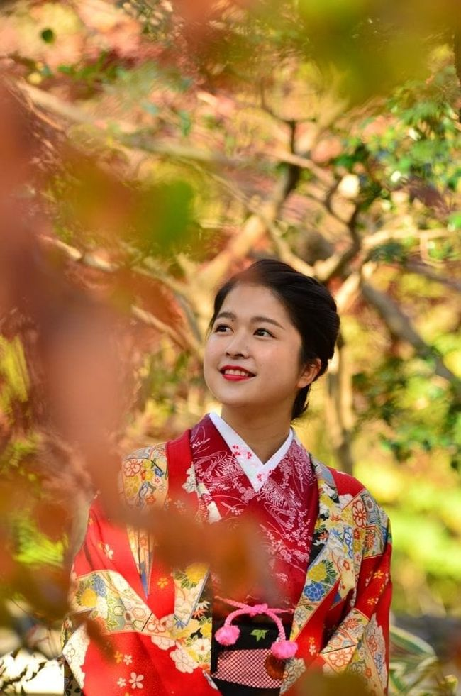 2019紅葉 法福寺の紅葉・自然の遺産の森・県営各務原公園(5)