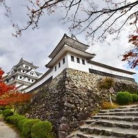 2019紅葉 日本最古の木造再建城郡上八幡の紅葉(6)