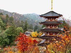 西国三十三所巡り始めましたぁ(^^)車中泊を楽しみながら行く夫婦巡礼の旅♡第二十八番札所「成相寺」