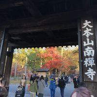午後からちょっと、大阪発紅葉の京都へ行っちゃいましょ