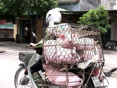 6年前、ベトナムへ行きました 【ハノイからハロン湾へ】